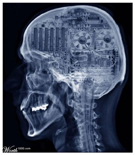 brains zombie apocalypse